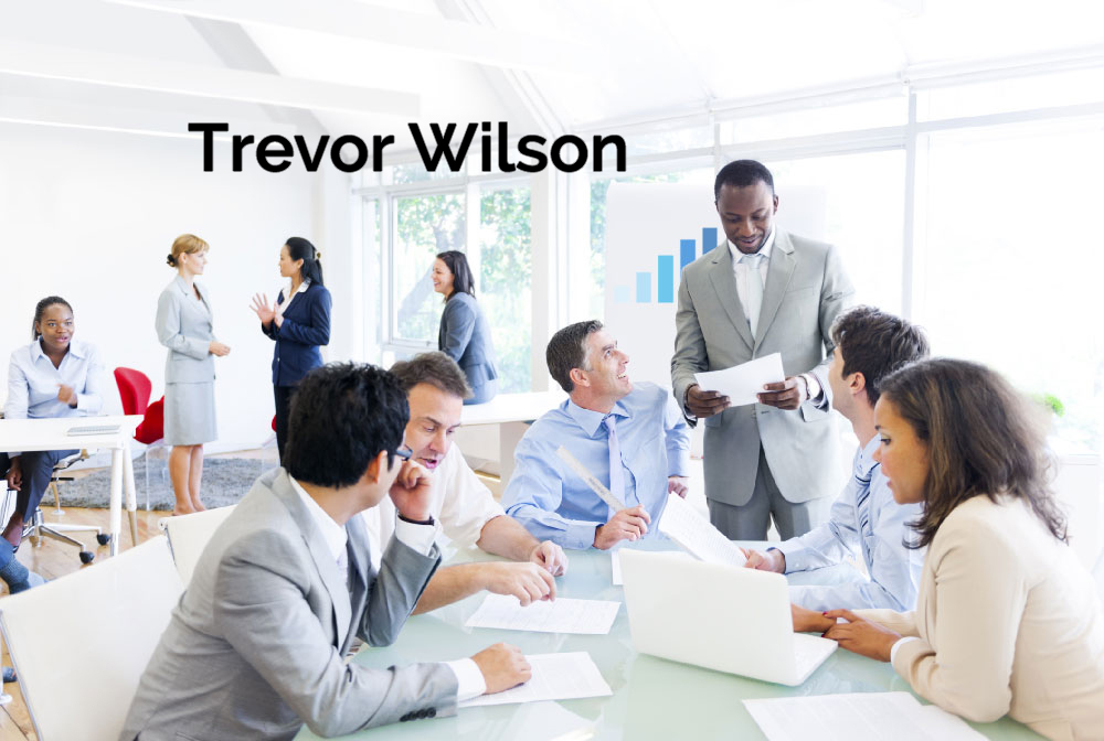 The Human Equity Advantage: Beyond Diversity to Talent Optimization – Wilson